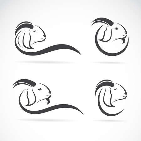 Vector group of an goat design on white background Vector