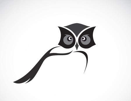 tatouage oiseau: Vector image d'une conception de hibou sur fond blanc