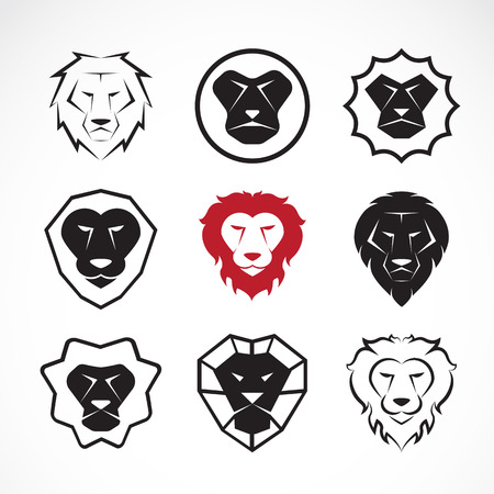 Vector group of an lion head design on white background Vector