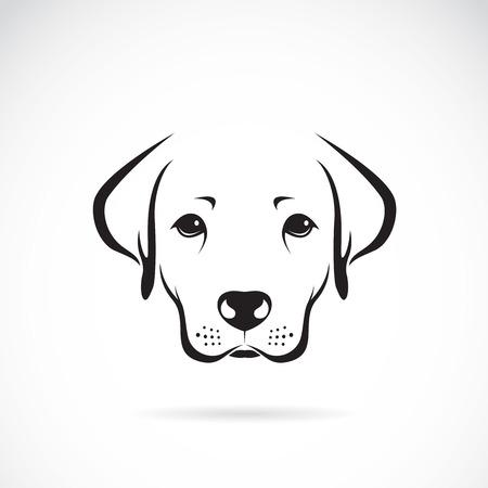 Vector Bild von einem Hund Labrador auf weißem Hintergrund