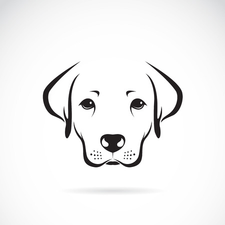 heart sketch: Vector image of an dog labrador on white background