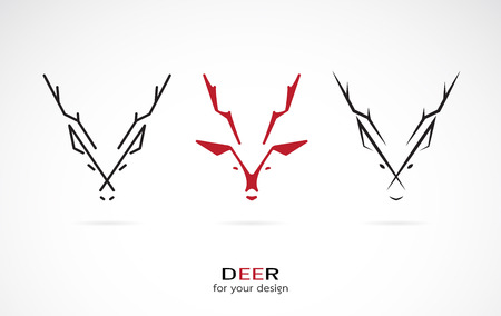 elk horn: Vector image of an deer design on white background