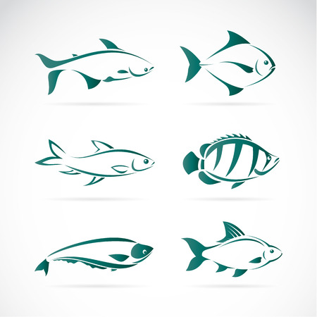 blue fish: Vector group of fish on white background