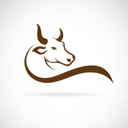cuernos: Vector de imagen de una cabeza de toro sobre un fondo blanco