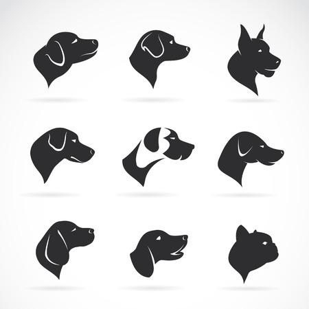 visage profil: Vector image d'une tête de chien sur fond blanc
