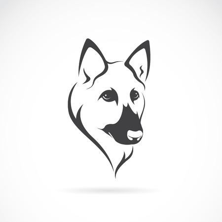 Vector image d'un visage de berger allemand sur fond blanc
