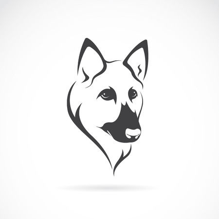 Vector image of an german shepherd face on white background Illustration