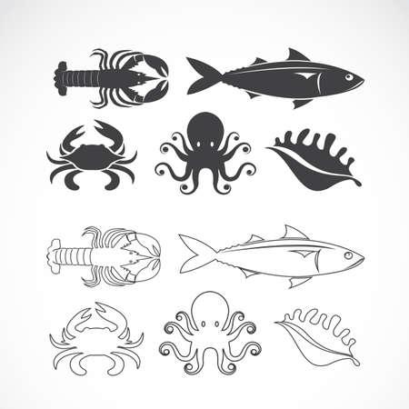 cangrejo caricatura: Vector conjunto de s�mbolos de mariscos en el fondo blanco