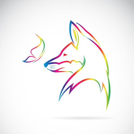 Vector image of butterfly and fox on white background Stock Illustratie