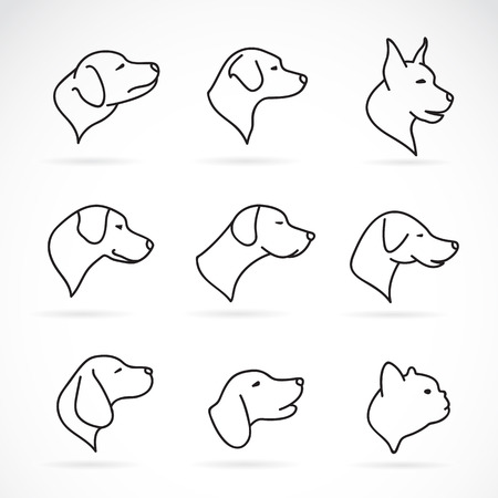 dog outline: Vector image of an dog head on white background Illustration