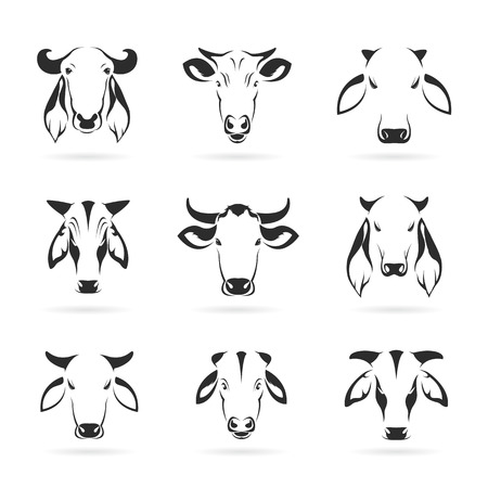 bull's eye: Vector set of cow head on white background Illustration