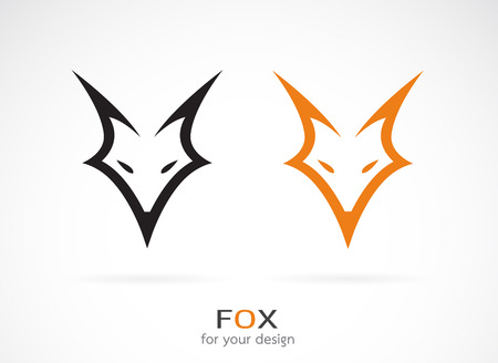 head of animal: Vector image of an fox face design on white background