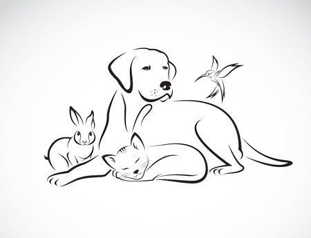 outlines: Vector group of pets - Dog, cat, bird, rabbit, isolated on white background Illustration