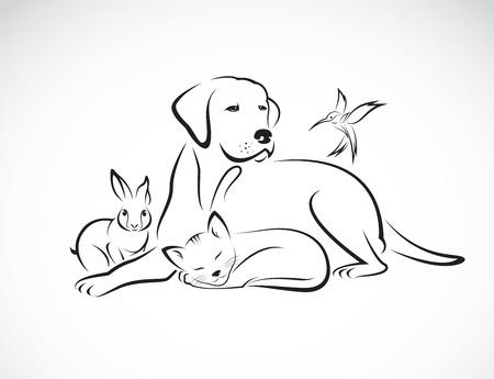 Vectorgroep van huisdieren - Hond, kat, vogel, konijn, op witte achtergrond wordt geïsoleerd die