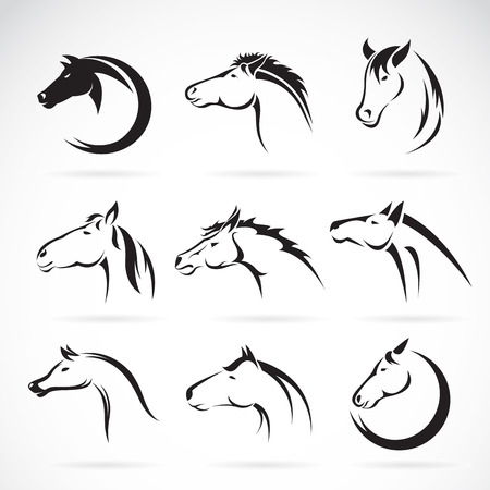 head shape: Vector group of horse head design on white background.