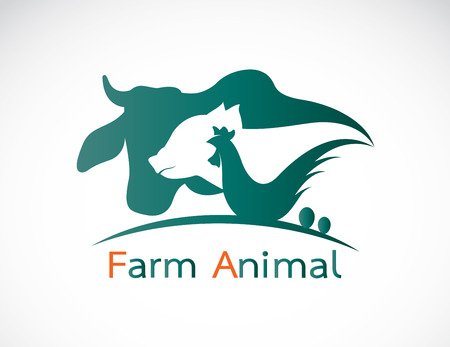 동물: 소, 돼지, 닭, 계란 - 동물 농장 라벨의 벡터 그룹