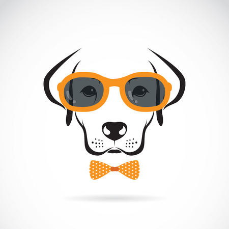 eye wear: images of dog labrador wearing glasses on white background. Illustration