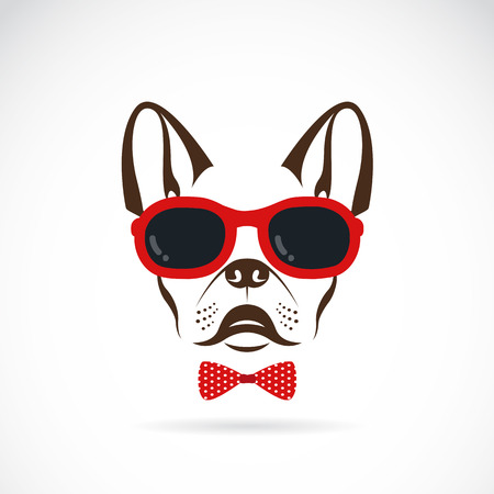 images of dog wearing sunglasses on white background. Vector