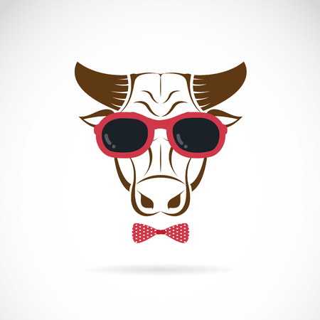 vector images: Vector images of bull wearing sunglasses on white background. Illustration