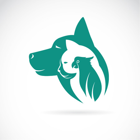 Vector Bild von einem Hund, Katze und Vogel auf weißem Hintergrund. Tierentwurf