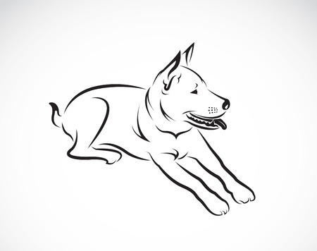 Vector images of dog on a white background