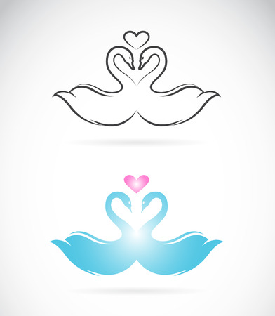 one female: Vector image of two loving swans on white background.