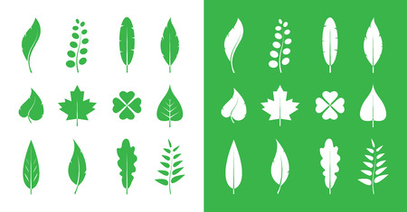 aspen: Leaves icon set on white and on green  Illustration