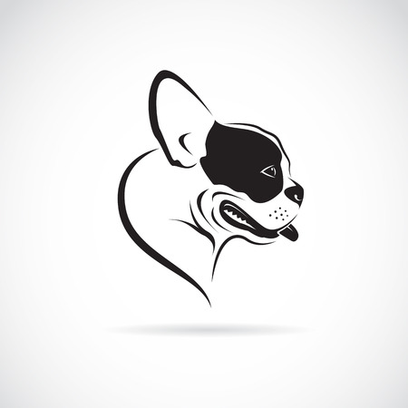 english: Vector image of an dog (bulldog) on white background