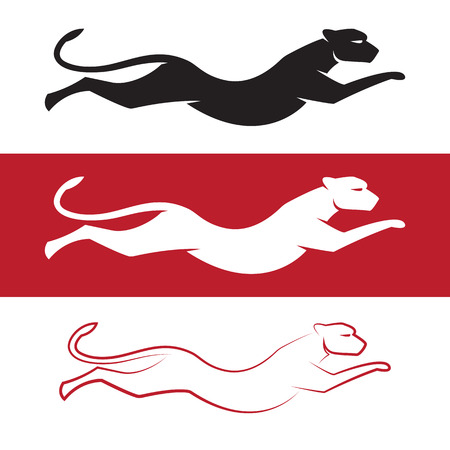 cougar: Vector image of an cheetah on white background and red background Illustration
