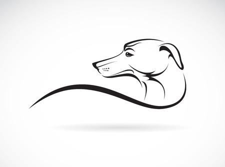白い背景の上犬 (azawakh) のベクトル画像