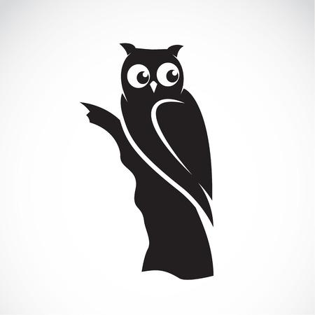 buhos: Vector de imagen de un b�ho sobre fondo blanco