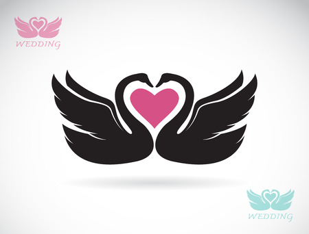 swimming silhouette: Vector image of two loving swans on white background.
