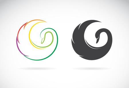 cisnes: Imágenes vectoriales de diseño del cisne en un fondo blanco. Vectores