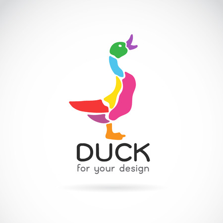 duck feet: Vector image of a duck design on white background
