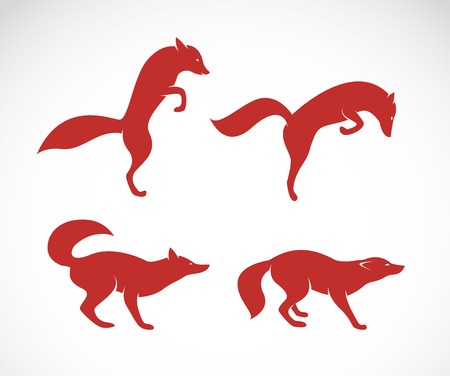 Vector image of an fox on white background Иллюстрация