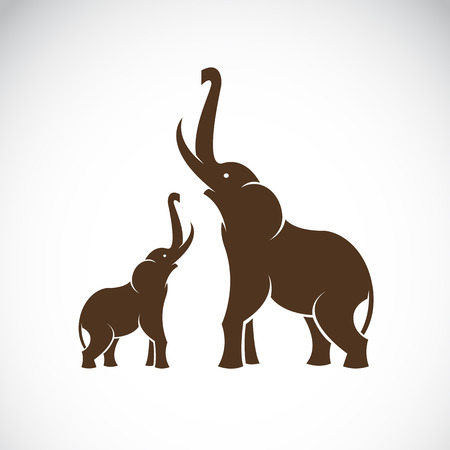 trunks: Vector image of an elephant on white background Illustration