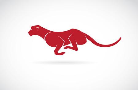 Vector afbeelding van een cheetah op een witte achtergrond Stock Illustratie