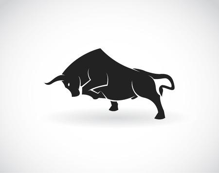 Obraz wektora byka na białym tle