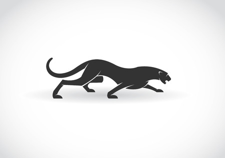black and white panther: Vector image of an panther  on a white background Illustration