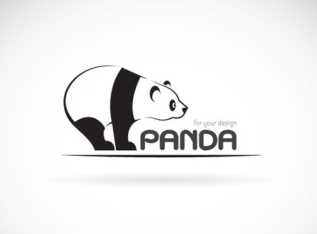 giant: Vector image of an panda design on a white background