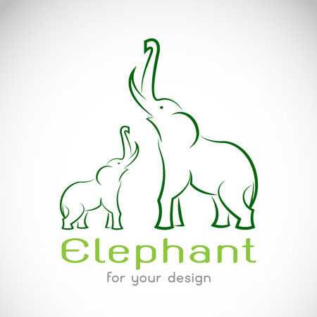 trunks: Vector image of an elephant on a white background