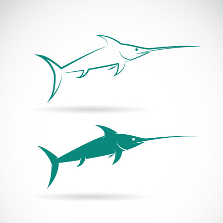 pez vela: Vector de imagen de un pez vela en el fondo blanco