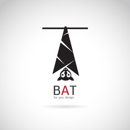 vector image: Vector image of an bat design on white background