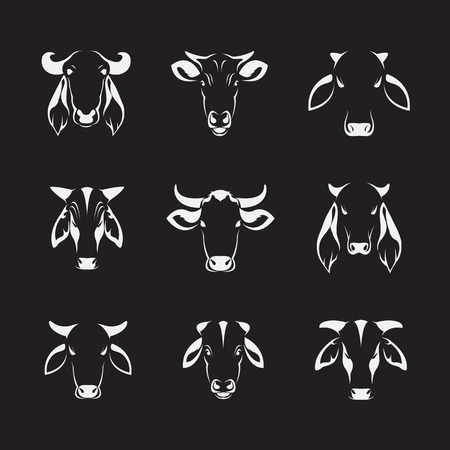 bull's eye: Vector set of cow head on black background Illustration