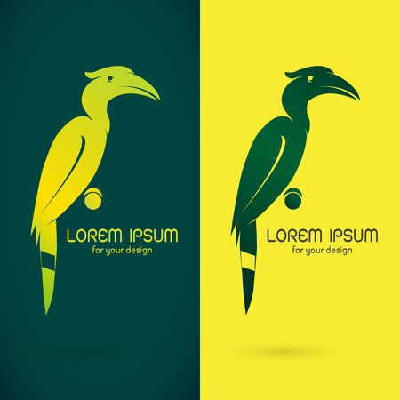 hornbill: Vector image of an hornbill design on green background and yellow background  Symbol