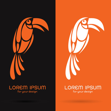 hornbill: Vector image of an hornbill design on black background and orange background  Symbol