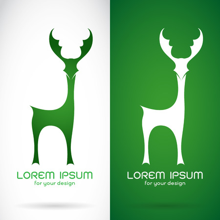 moose antlers: Vector image of an deer design on white background and green background  Symbol