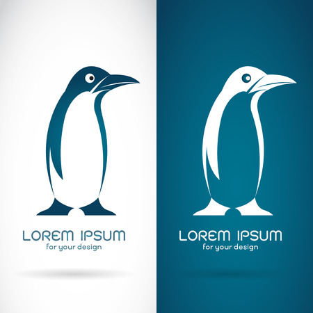 arctic penguin: Vector image of an penguin design on white background and blue background  Symbol