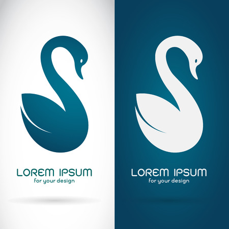 Vector image of an swan design on white background and blue background  Symbol Vector