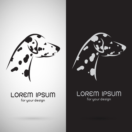 black and white image: Vector image of an dalmatian dog design on white background and black background , Symbol Illustration